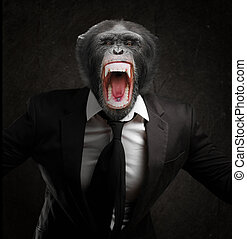 Frustrated Monkey In Business Suit Isolated On Black...