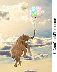 Elephant Flying With Balloon In Sky