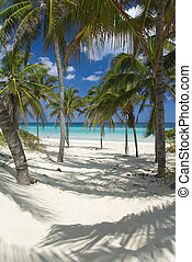 beach - beautiful scene on the beach in Guanabo - Cuba