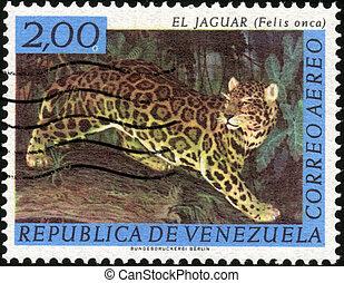 estampilla,  el,  jaguar