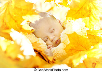Autumn newborn baby sleeping in maple leaves