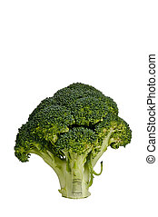 Broccoli - Large full head of delicious and nutritious...