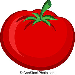 Tomato - Vegitable Fruit Tomato