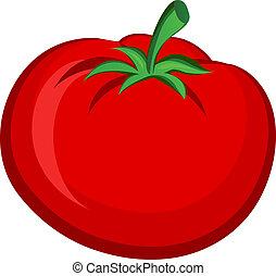 Tomato - Vegitable/ Fruit Tomato