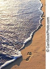 tropicais, praia, pegadas