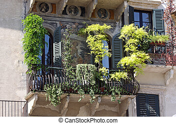 Balconies with many green plants in Verona - Balconies at...