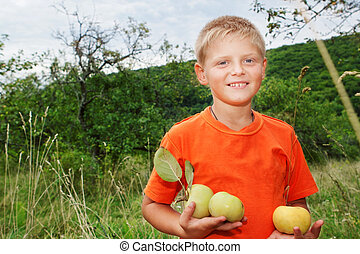 Boy with apples in the garden.