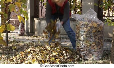 Autumn scene - Woman picking up leaves in a summer day