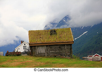 Old wooden house in Norway - old wooden house with grass on...