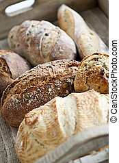 Bread loaves - Various kinds of fresh baked bread loaves in...