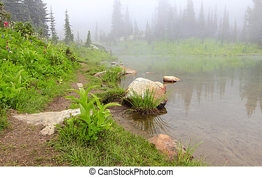 Mountain lake in the fog with rock and flowers.. Naches Peak...