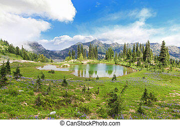 Mountain lake with green beautiful landscape near Mt. Ranier. Naches Peak.
