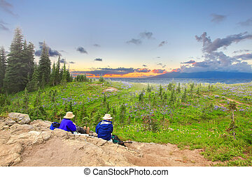 Senior hikers are watching sunset in the firled of wild...