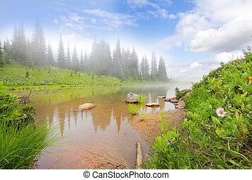 Mountain lake with fog, rock, flowers and trees. Mt. Ranier...