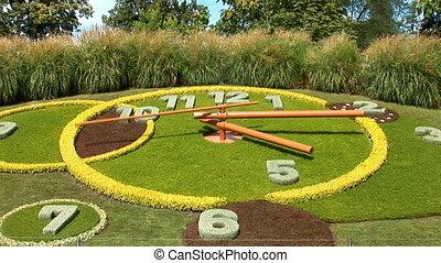 flower clock5sec g - flower clock - full rotation of second...