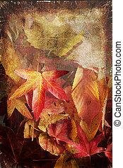 Autumn leaves background - Beautifu colourful autumn leaves...