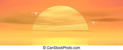 Seagulls by sunset - Big yellow sun shining while sunset...