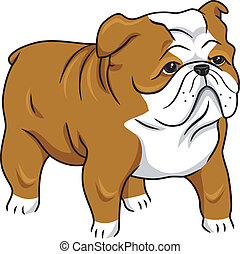 English Bulldog - Illustration Featuring a Cute English...