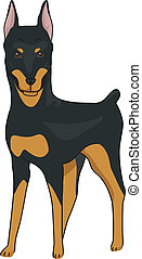 Doberman Pinscher - Illustration Featuring a Tall and Alert...