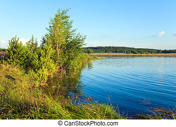 Summer rushy lake view with pine and small grove on opposite...