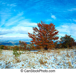 First winter snow and autumn colourful foliage on mountain -...