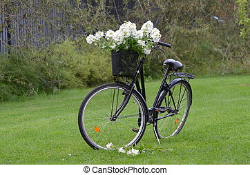Black Bike, white flowers - My friends byke with some...