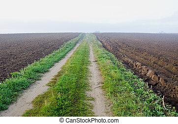 autumn misty road in plowed farm field