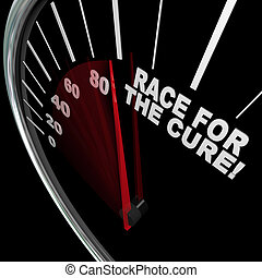 Race for the Cure Speedometer Fundraiser Words - A black...