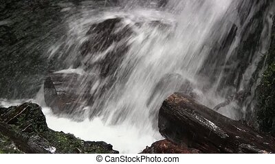 Water fall flowing onto logs