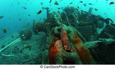 Anchor chain of shipwreck the SS Thistlegorm. Red Sea.