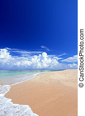 Seascape of Okinawa - Blue sky and a white sandy beach