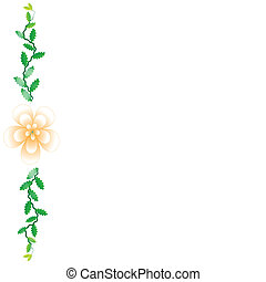 Flower of frame on white background