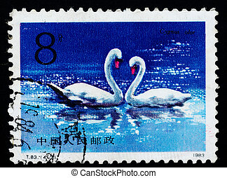A Stamp printed in China shows swan, 1983