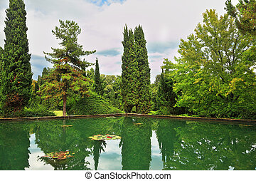 The water of a pond reflects cypresses