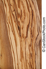 fine olive wood texture close-up
