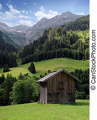 a typical wooden hut somewhere in the alps