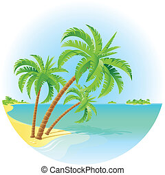 Tropical island - Coconut palm trees on a island....