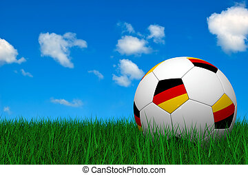German soccer ball laying on the grass