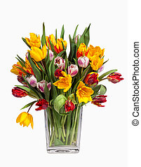 Tulips Bouquet isolated on white - Spring Tulips Bouquet in...