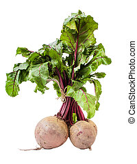 Beet root Beta vulgaris - bunch of Beetroot, isolated on...
