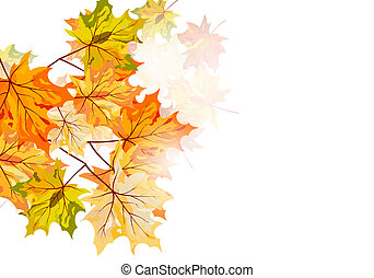 Autumn maple leaves background. Vector illustration with...