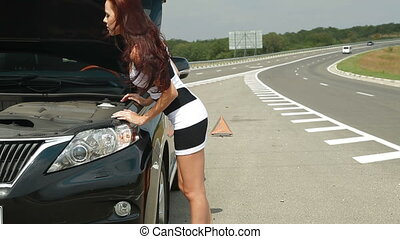 Woman with her Broken Car