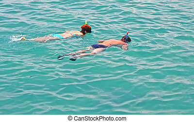 snorkelling - A photography of a turquoise ocean water...