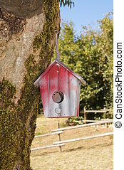 Red bird box hanging from a tree