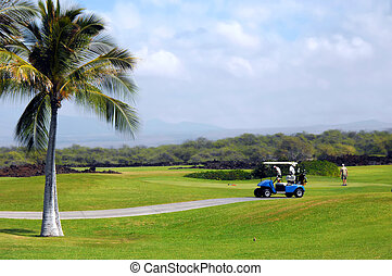 Active During Retirement - Group of retirees golf on the Big...