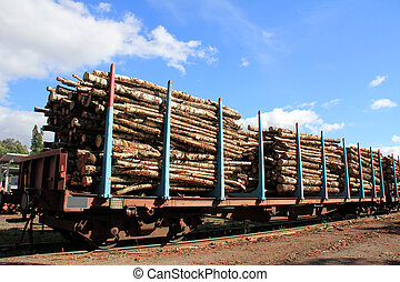 Transporting Wood on Railcars - Railcars of wood at the...