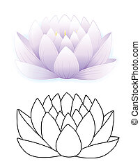 Blue lotus - Vector illustration of blue lotus and outlined...