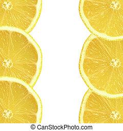 Lemon Freshness - Six fresh lemon slices, three on each side...