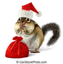 Chipmunk in red Santa Claus hat with Santas bag - Chipmunk...