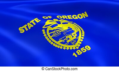 Oregonian flag in the wind. Part of a series.